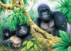 Painting by numbers MOUNTAIN GORILLAS